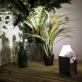 Techmar Etu 12V LED Garden Wall Light