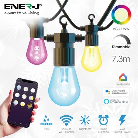 Smart Festoon Lighting Kit