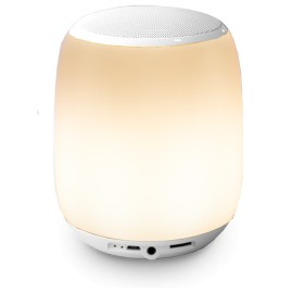 Techmar Smooz Orb Rechargeable LED Light With Bluetooth Speaker